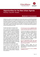 Opportunities for the New Urban Agenda